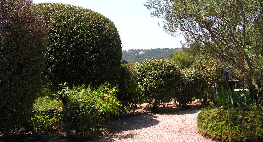 Jardinier paysagiste marseille 13009 avec al garden for Emploi entretien jardin