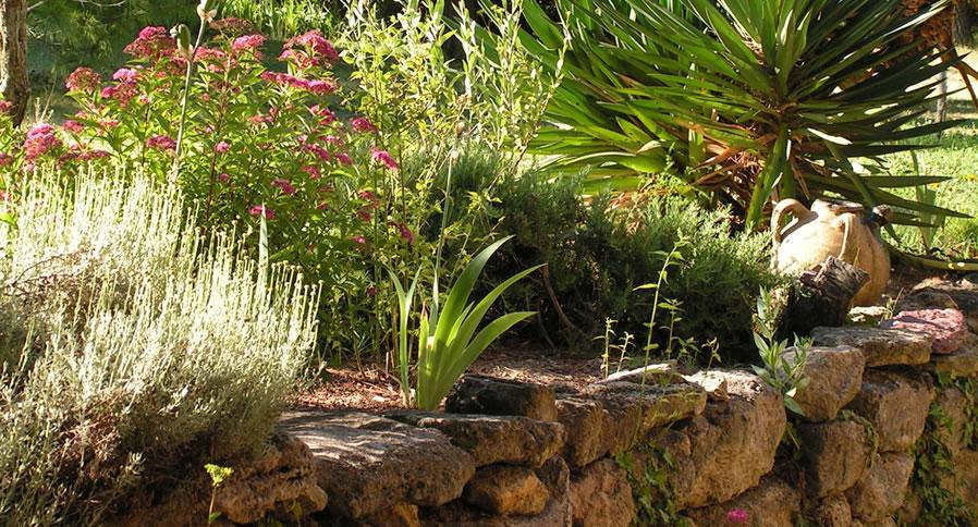 Jardinier paysagiste marseille 13009 avec al garden for Jardinier cheque emploi service